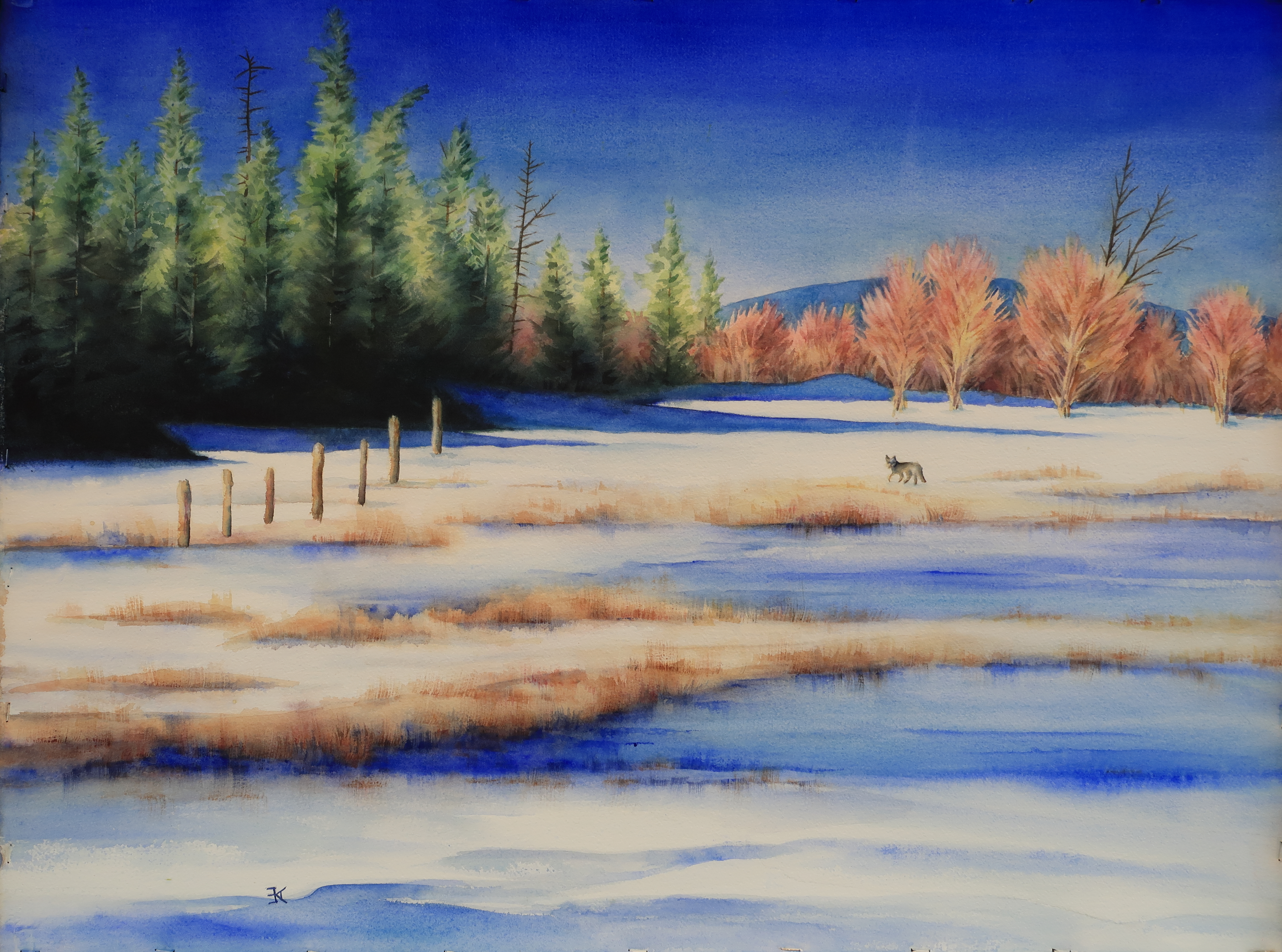 coyote in snowy meadow painting