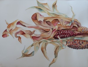 Indian Corn painting